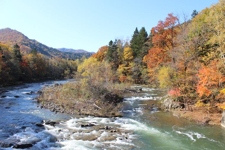 滝の手前の紅葉風景