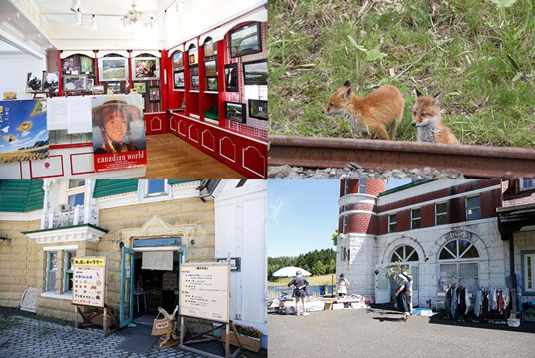 (左上)園内には生き物がたくさん。(右上)輝く湖水に面した建物の中には、カナダに関する展示も。(左下)(右下)週末やイベント時にはテナントも営業しています。写真は平成28(2016)年の「赤毛のアン祭」でのテナントの様子。