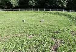 野花南周堤墓群